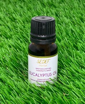Eucalyptus Oil, 100% Pure & Natural Eucalyptus Globulus Oil, Therapeutic-Grade Aromatherapy Essential Oil, 10ml (0.33oz)